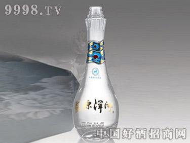 苏源洋河酒瓶-新010
