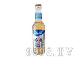 小白帆冰爽啤酒