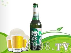 赛雪啤酒500ML