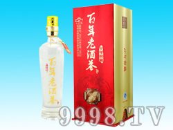 百年老酒巷窖藏(10)