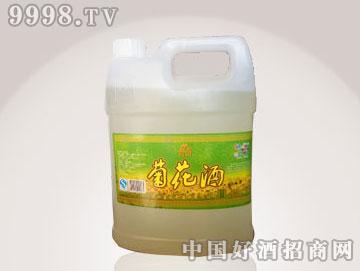 菊花酒4L