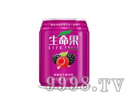 树莓维生素饮料(易拉罐)