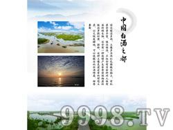 企业文化-中国白酒之都