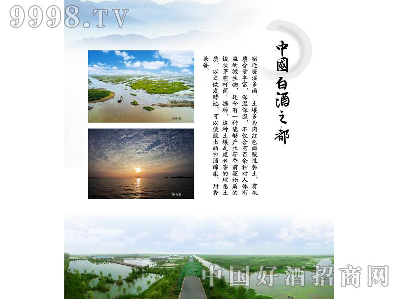 企业文化-中国白酒之都-白酒招商信息