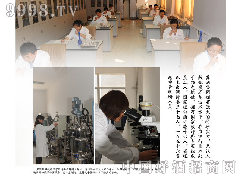 企业文化-苏酒集团科技创新-白酒招商信息