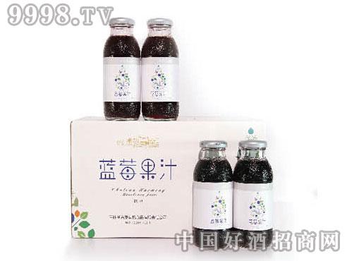 大众蓝莓果汁