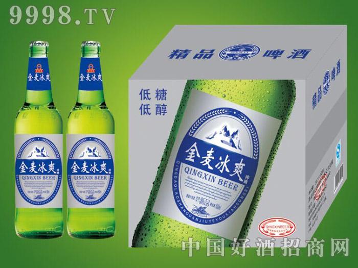 崂山泉千赢国际手机版500ml金麦冰爽绿瓶1X12