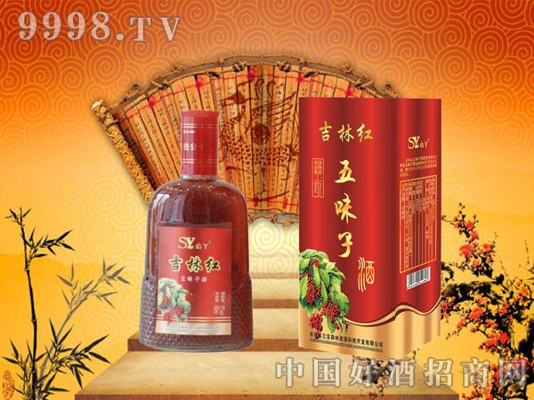 吉林红五味子酒