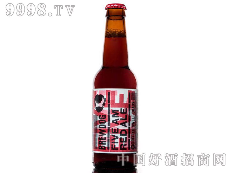 英国酿酒狗凌晨5点圣徒红色艾尔啤酒