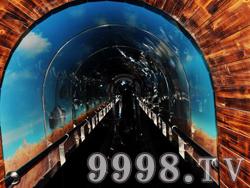 十二生肖园实景(隧洞)