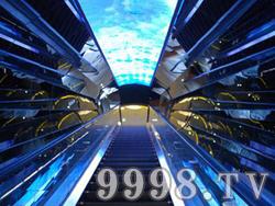 十二生肖园实景(电梯)