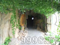 十二生肖园实景(隧道)