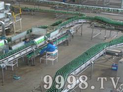 泰山啤酒厂区(泰安)流水线