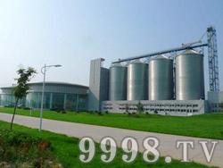 泰山啤酒厂区(泰安)工业