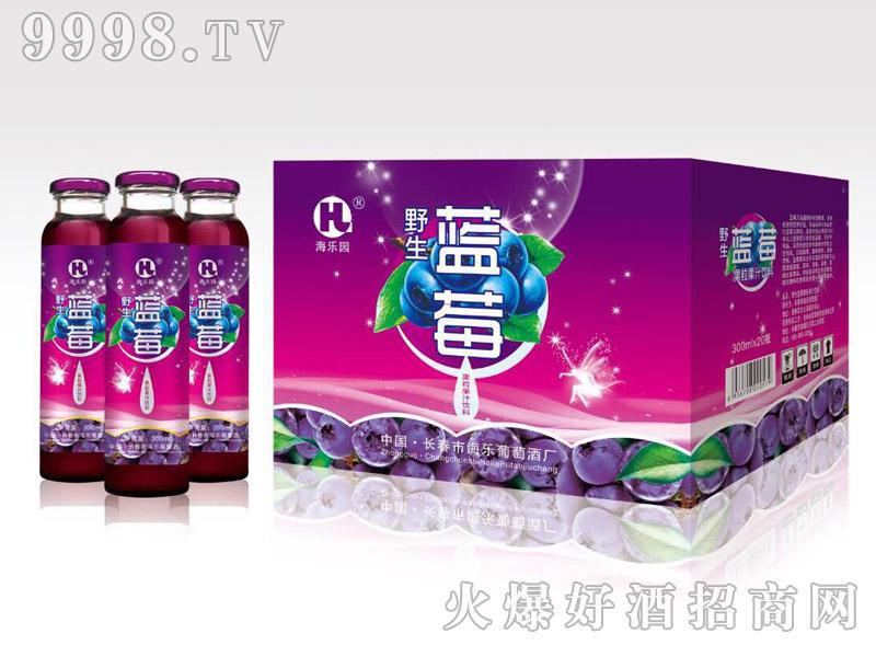 海乐野生蓝莓汁