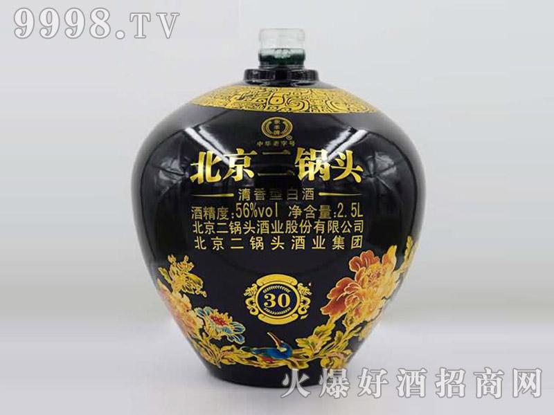 郓城鑫正包装大酒坛T-003北京二锅头