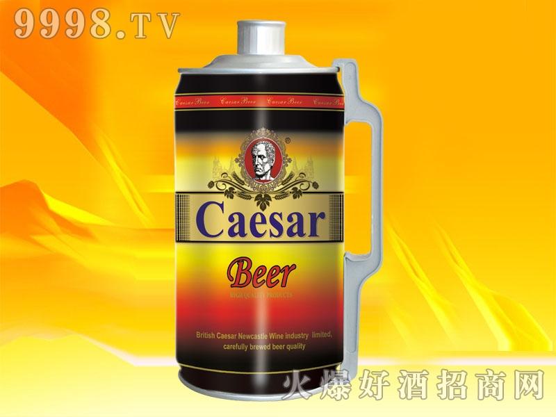 SN004-2L恺萨烈性啤酒
