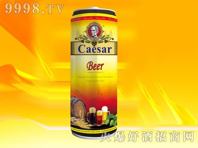 SN001-10L恺萨烈性啤酒