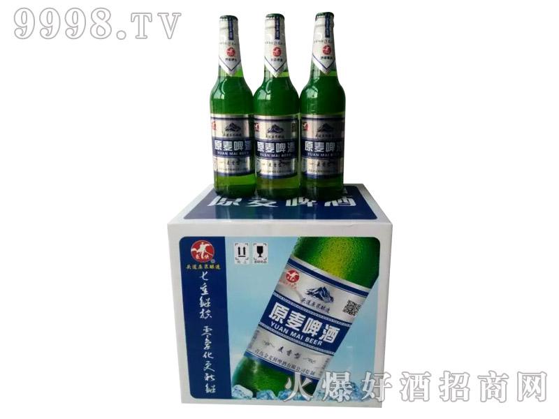 500ml麦香型原麦啤酒