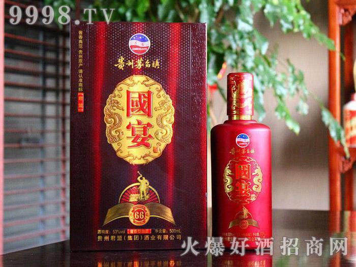 贵州茅台镇国宴酒珍藏66 53°