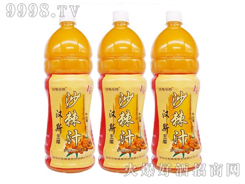 汉斯沙棘果汁饮料