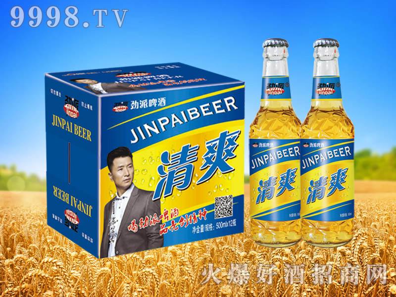 劲派清爽啤酒500ml×12瓶