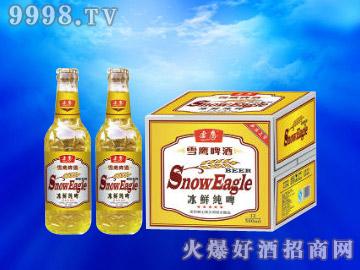 雪鹰冰鲜纯啤500ml