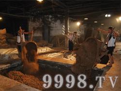 醉美皖酒窖池-生产