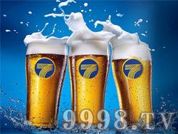 七箭扎啤-白啤