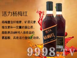 醉青春杨梅酒32度460ml