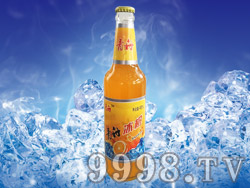 青舟冰橙橙味碳酸饮料