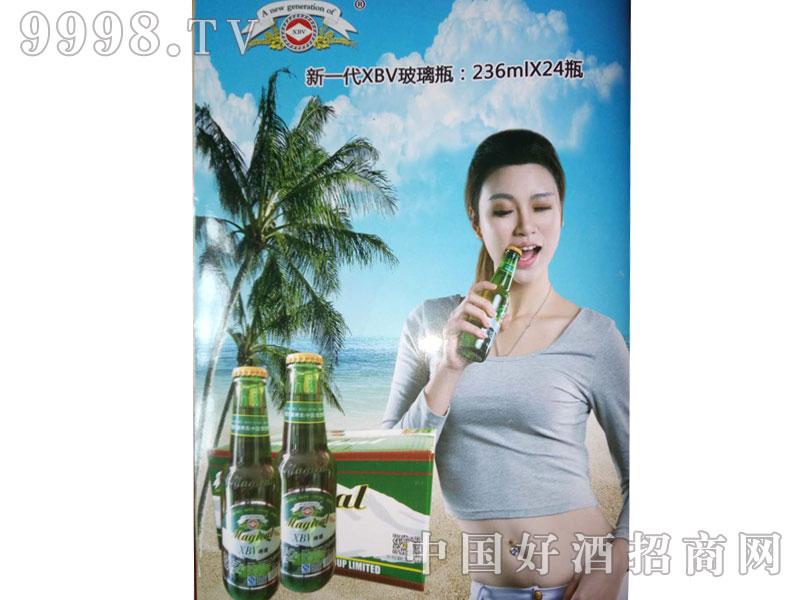 百威啤酒236ml海报