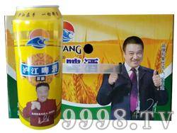 泸江啤酒500mlx12罐