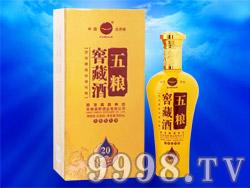 五粮窖藏酒20