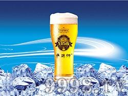 12°P萨瑞娜1356小麦原浆黄啤扎啤