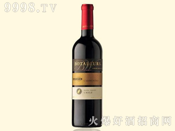 智利-思想者-特级珍藏卡门尼雅干红葡萄酒