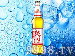 金星啤酒冰爽纯生510ml×12