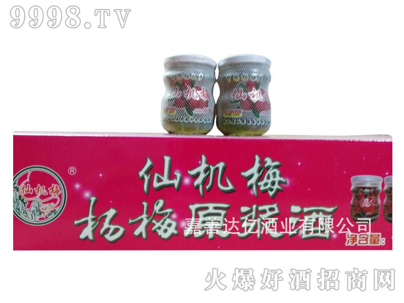 仙机梅杨梅酒185克X24瓶