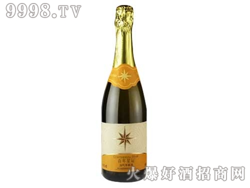 张裕百年星运苹果起泡酒750ml