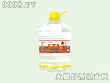 江滨红高粱酒42°10L(1×2)