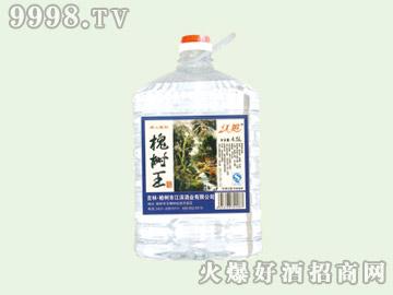 江滨槐树王酒50°4.5L(1×4)