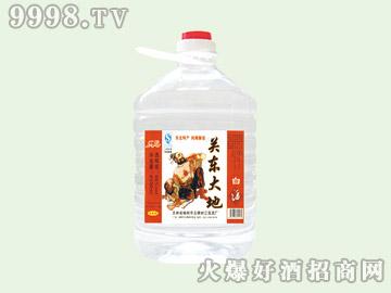 江滨关东大地酒45°4.5L(1×4)