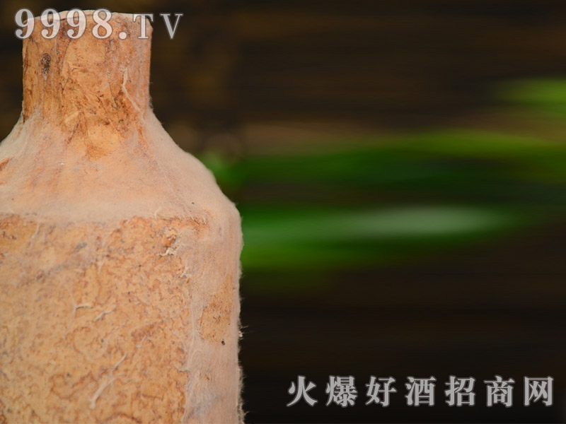 茅台镇 任意门 洞藏老酒一斤瓶装(瓶身)