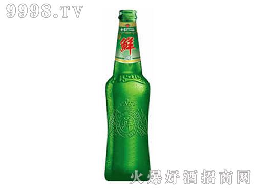 原浆鲜啤酒-啤酒招商信息