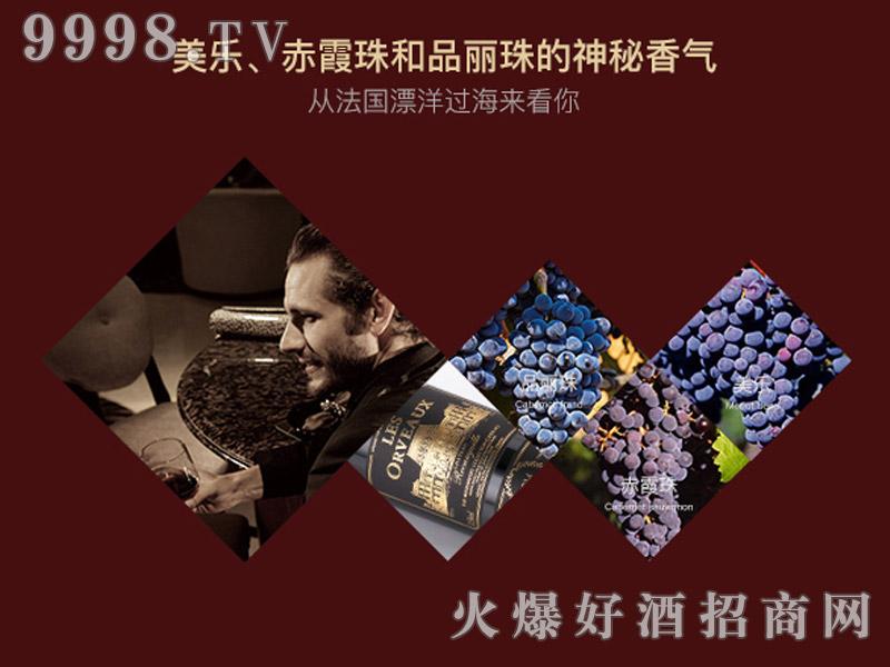 乐慕酒师珍藏9号酒窖干红葡萄画册・香气介绍