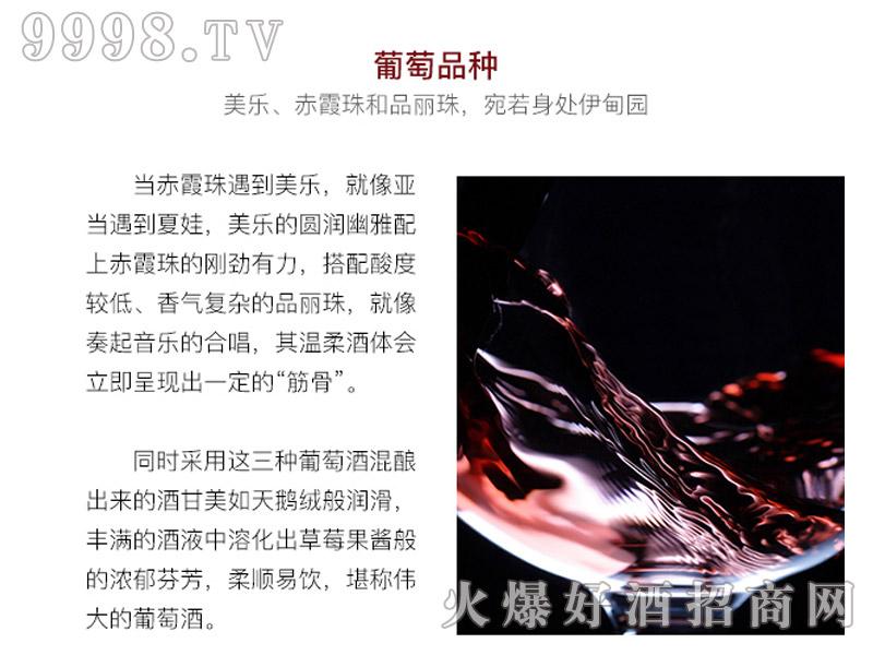 乐慕酒师珍藏9号酒窖干红葡萄画册・葡萄品种