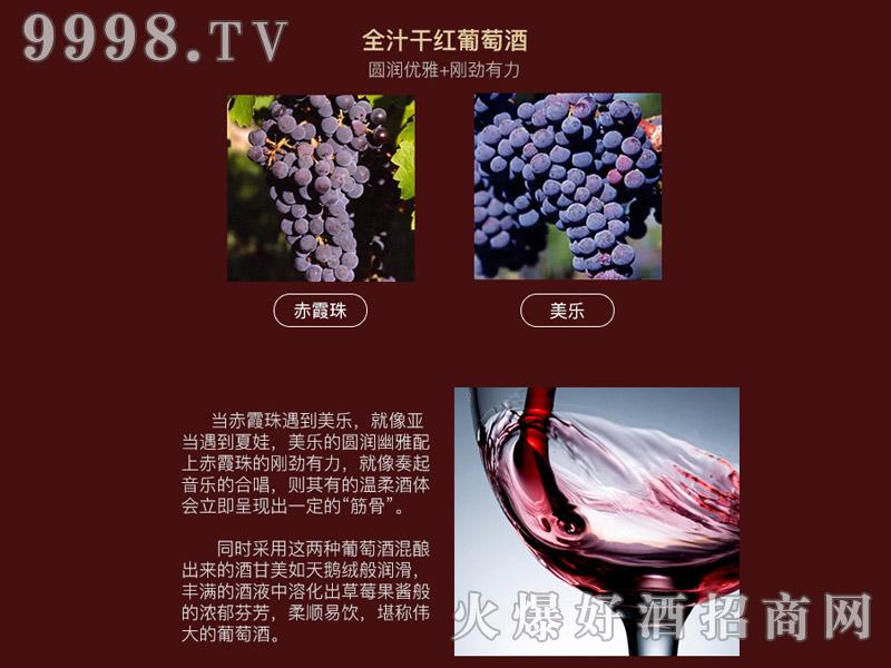 乐慕波尔多古堡干红葡萄画册・葡萄品种