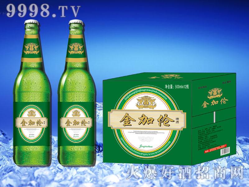 金加伦啤酒500ml