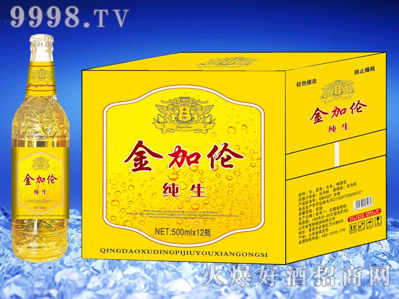 金加伦纯生啤酒500ml×12(白瓶)