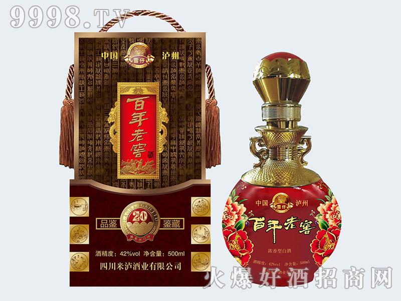 雪仔百年老窖酒鉴藏20(定制产品)